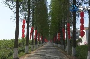 宝应第三届桃花旅游节,美了风景、鼓了腰包!