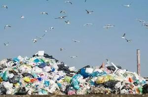 意大利垃圾饱和,再过两年我们都要在垃圾堆里生活了