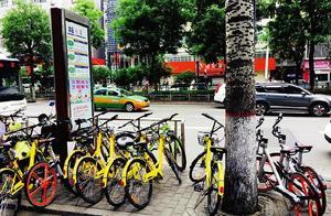 西安严控共享单车进入却仍有违规投放 背后原因何在?