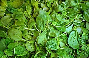 菠菜和此物一起炒,是血管清道夫,清血管、防血栓,为身体大扫除