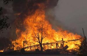 贵州一女子上坟时不慎烧毁700多亩幼林!昨日被批准逮捕
