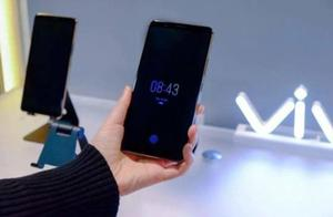 OLED+屏下指纹占领市场:LCD份额进一步缩水