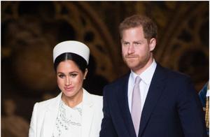 哈里王子或派非洲怎么回事 哈里王子被流放了吗为何去非洲
