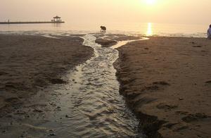 葫芦岛·东戴河,美女和夕阳