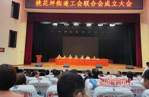 隆回县桃花坪街道召开工会联合会成立大会