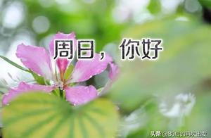 我的祝福和晨曦一同到来,祝你在新的一天里安康、好运、一切顺利