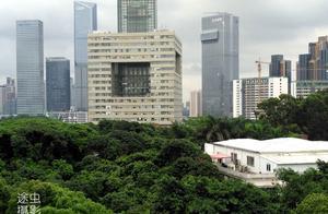 在深圳大学俯瞰深圳最强区南山区,天际线壮观,绿化更值得点赞!
