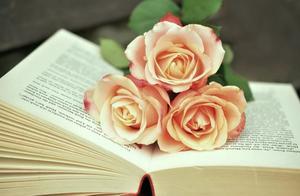 最经典的名篇名句100则,学生必背,收藏打印!| 世界读书日