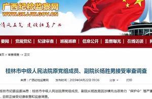 """涉嫌充当恶势力""""保护伞""""!桂林中院原党组成员、副院长杨胜男接受审查调查"""