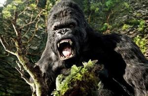 《哥斯拉2》中国上映,盘点这些大怪兽的前世今生!