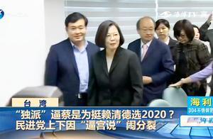 """""""独派""""逼蔡是为挺赖选2020?民进党上下因""""逼宫说""""闹分裂"""