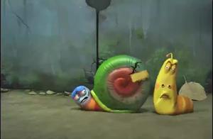 100t的蜗牛壳,你以为是在开玩笑吗?