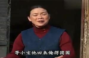 民间小调《小白菜泪汪汪》儿子回来大团圆,小白菜母亲真高兴!