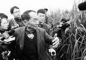 袁隆平超级杂交稻亩产创纪录