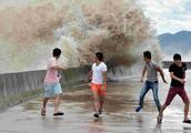 """现场直击台风""""天鸽""""的威力:14级台风掀起的巨浪高达数米"""