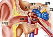 导致严重听力损失的因素都有哪些?你可能正在遭受伤害(警惕)