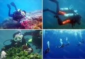 綠寶石386潛水術在哪里得到