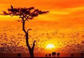 南非最好的旅游季节