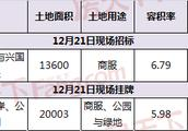 永利国际大厦开发商招标竞得青鱼嘴商业地块 12月还有28宗地要卖