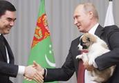 """普京总统获赠""""萌犬"""",一秒都不舍得放下,对狗绝对是真爱!"""