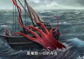 日本发现巨型大王乌贼,是已知第二大的软体动物和无脊椎动物之一