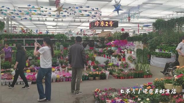 北京玉泉资本管理有限公司怎么样?
