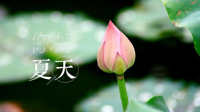 求形容鱼鸟之恋的<a href=/gushiwen/shici/ target=_blank class=infotextkey>诗词</a>和句子