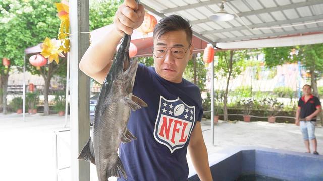 各位高手鸭嘴鱼怎么做好吃?家在深圳