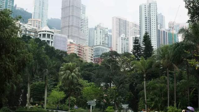 香港房地产的历年走势