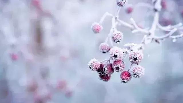 有什么诗句可以表达我想和你在一起