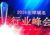 2016杭州域名峰会纪实:为什么2015域名市场如此火爆?!
