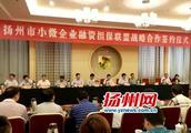 """扬州小微企业融资担保联盟12.5亿""""输血""""小微企"""