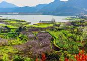 """湖北最""""低调""""的山村,春色美如世外桃源,游客:不比婺源差"""