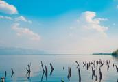 """洱海公园是观赏""""苍山洱海""""景色的好处所"""