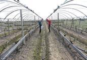 2018法律规定:违反基本农田的用途,将会导致土地承包合同无效!