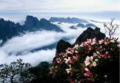 不用跑三地!它集黄山、庐山、张家界之美于一身!还人迹罕至!