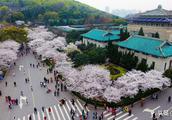 排名登顶第三后跌落神坛,武汉大学这两年发生了什么?