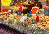 鸡蛋价格涨后再转低迷!何时能迎来真正的春天?!