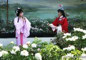 红楼梦里为什么探春是王夫人抚养,贾环却由赵姨娘抚养?