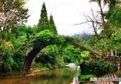 诗行天下17:上里古镇,川西重镇,丝路要隘,国家历史文化名镇