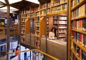 去图书馆喝茶:国产茶品牌开了一间可圈可点的茶馆