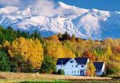比普罗旺斯更鲜艳,还有瑞士的雪山田园,更重要的是就在我们旁边