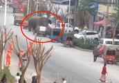 """野生大象""""到访"""" 云南小镇商业街 未造成人员伤亡"""