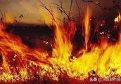 山西沁源森林火灾原因已查明,嫌犯被刑拘