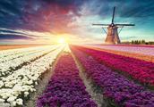 风车王国—荷兰