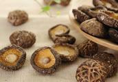 香菇别再做配料了,试试这5种家常菜的做法,好吃又健康