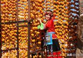 上联:吃甜柿子柿柿开心如意,下联请您来对!