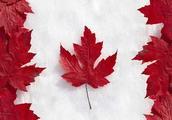多伦多、温哥华、蒙特利尔,加拿大哪个城市最适合生活?