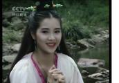 92版的《仙鹤神针》里那么多漂亮的古装美女,你们最喜欢哪一个?
