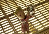 《复仇者联盟3》中浣熊给雷神的那只眼睛,到底是在哪儿偷的?